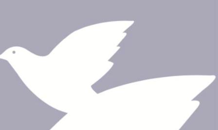 Opvang vluchtelingen: oproep aan parlementsleden